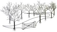 Trees & Woodland Metal Wall Art